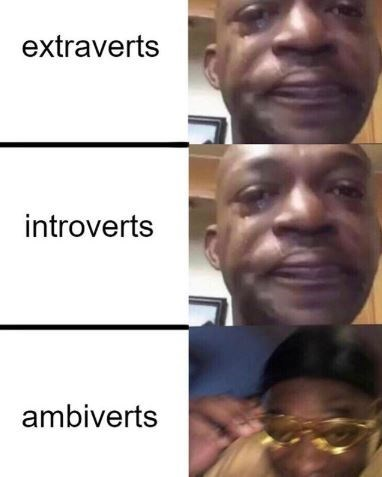 Face - extraverts introverts ambiverts