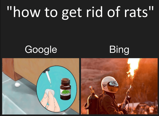"""Text - """"how to get rid of rats"""" Google Bing"""