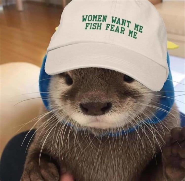 Mammal - WOMEN WANT ME FISH FEAR ME