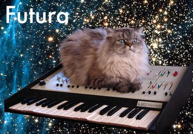 Cat - Futura bscdyseay