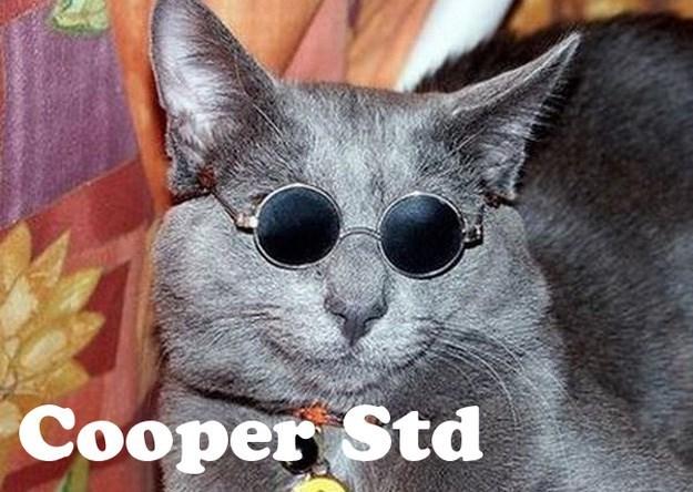 Cat - Соорer Std