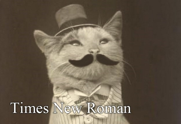 Whiskers - Times New Roman
