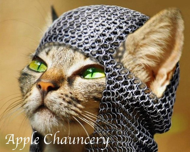 Cat - Apple Chauncery