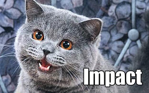Cat - Impact