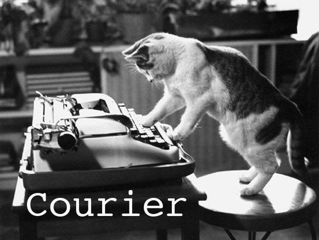 Dog - Courier