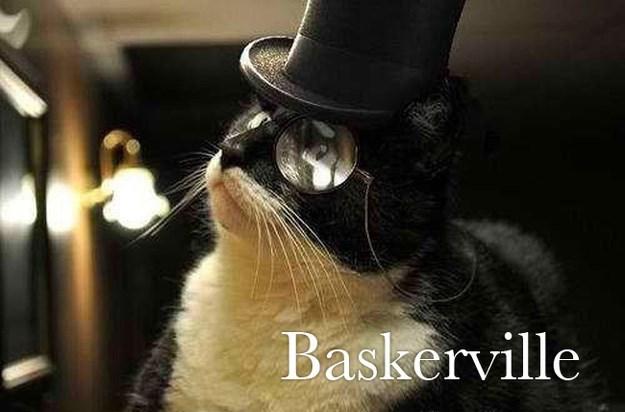 Cat - Baskerville