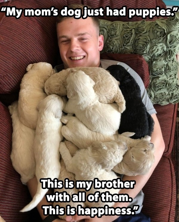 """Fur - """"My mom's dogjust had puppies. This is my brother with all of them. This is happiness."""
