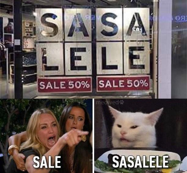 cat memes - 9375571200
