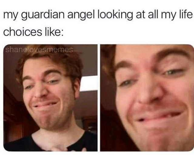Face - my guardian angel looking at all my life choices like: shanelovesmemes