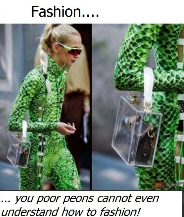 "Funny meme that reads, ""Fashion...you poor peons cannot even understand how to fashion!"""