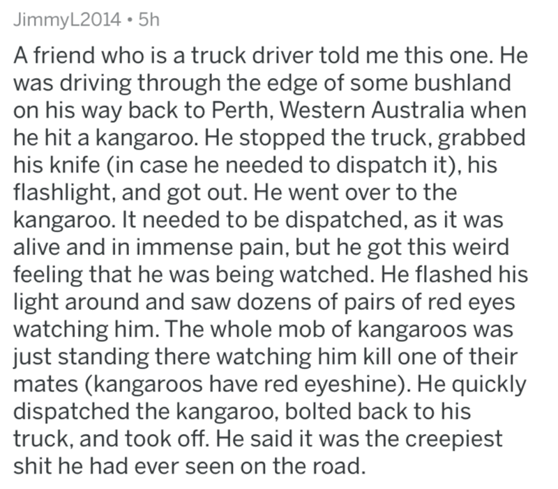 Text - JimmyL2014 5h A friend who is a truck driver told me this one. He was driving through the edge of some bushland on his way back to Perth, Western Australia when he hit a kangaroo. He stopped the truck, grabbed his knife (in case he needed to dispatch it), his flashlight, and got out. He went over to the kangaroo. It needed to be dispatched, as it was alive and in immense pain, but he got this weird feeling that he was being watched. He flashed his light around and saw dozens of pairs of r