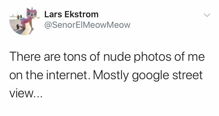 Text - Lars Ekstrom @SenorElMeowMeow There are tons of nude photos of me on the internet. Mostly google street view...