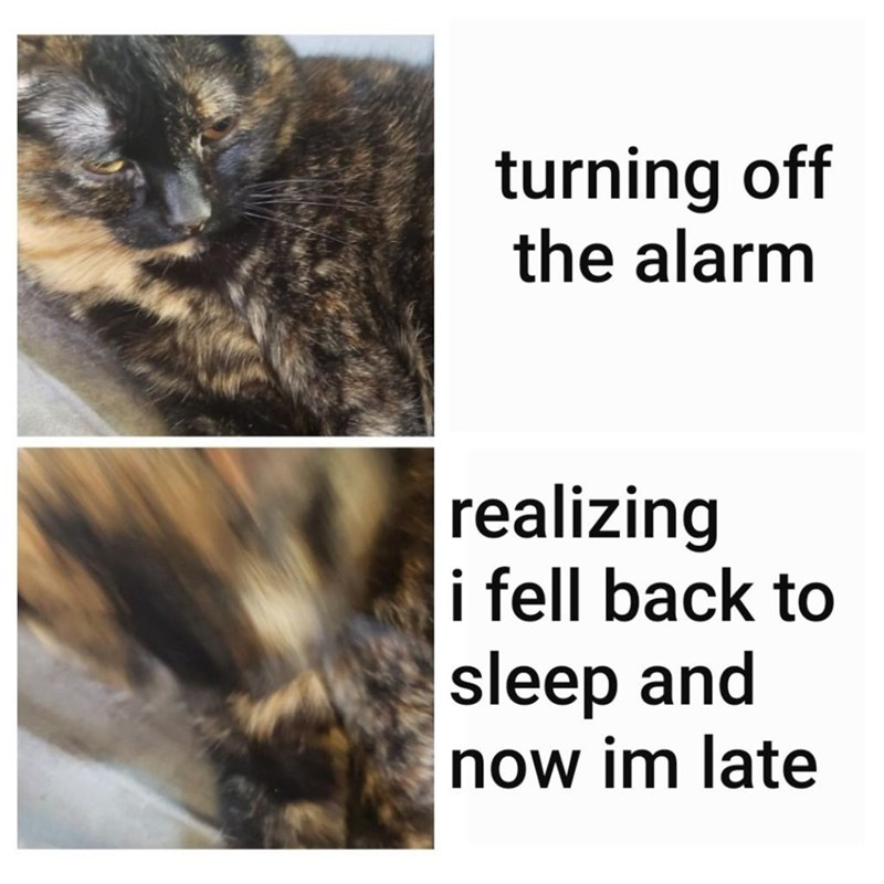 Hair - turning off the alarm realizing i fell back to sleep and now im late