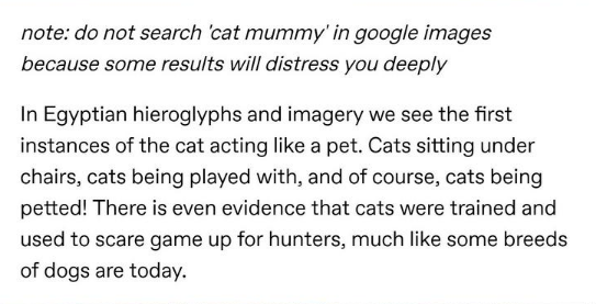 Text - note: do not search 'cat mummy' in google images because some results will distress you deeply In Egyptian hieroglyphs and imagery we see the first instances of the cat acting like a pet. Cats sitting under chairs, cats being played with, and of course, cats being petted! There is even evidence that cats were trained and used to scare game up for hunters, much like some breeds of dogs are today.