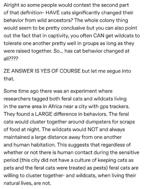 Text - Alright so some people would contest the second part of that definition- HAVE cats significantly changed their behavior from wild ancestors? The whole colony thing would seem to be pretty conclusive but you can also point out the fact that in captivity, you often CAN get wildcats to tolerate one another pretty well in groups as long as they were raised together. So... has cat behavior changed at all???? ZE ANSWER IS YES OF COURSE but let me segue into that Some time ago there was an exper
