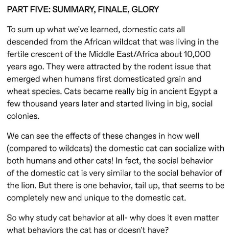 Text - PART FIVE: SUMMARY, FINALE, GLORY To sum up what we've learned, domestic cats all descended from the African wildcat that was living in the fertile crescent of the Middle East/Africa about 10,000 years ago. They were attracted by the rodent issue that emerged when humans first domesticated grain and wheat species. Cats became really big in ancient Egypt a few thousand years later and started living in big, social colonies We can see the effects of these changes in how well (compared to wi