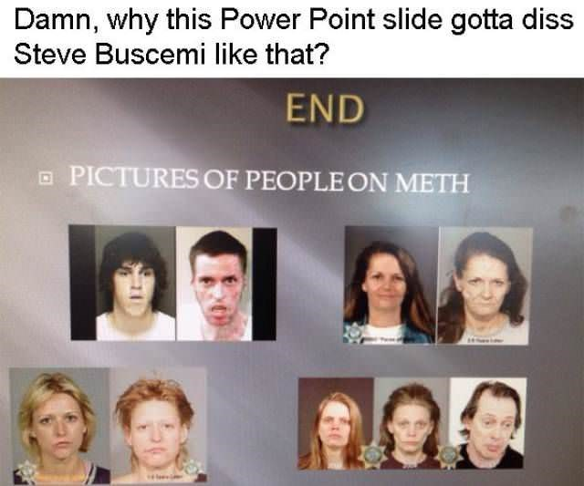 Face - Damn, why this Power Point slide gotta diss Steve Buscemi like that? END PICTURES OF PEOPLEON METH