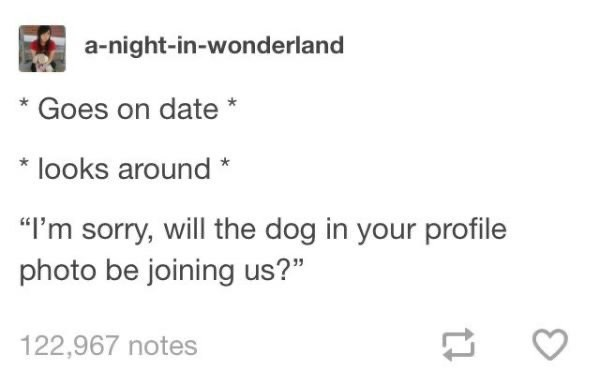 "Text - a-night-in-wonderland Goes on date *looks around* ""I'm sorry, will the dog in your profile photo be joining us?"" 122,967 notes"
