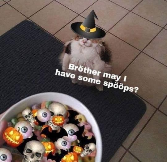 Yellow - Bröther may I have some spööps?