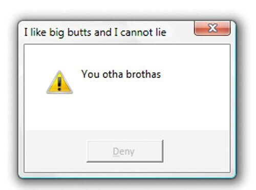 Text - X I like big butts and I cannot lie You otha brothas Deny