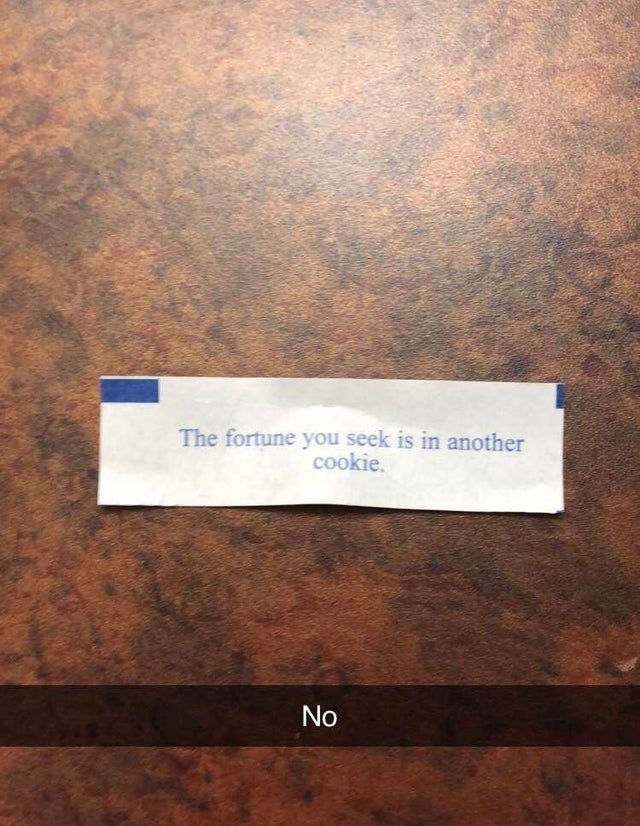 Text - The fortune you seek is in another cookie. No
