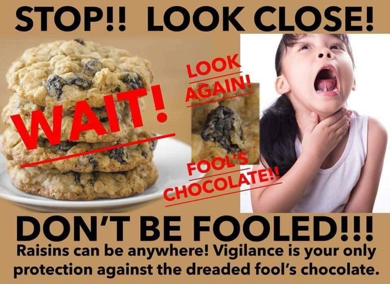 Junk food - STOP!! LOOK CLOSE! LOOK AGAINI WAT FOOLS CHOCOLATE DON'T BE FOOLED!!! Raisins can be anywhere! Vigilance is your only protection against the dreaded fool's chocolate.