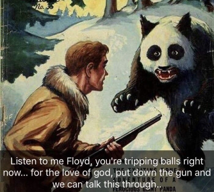 Photo caption - Listen to me Floyd, you're tripping balls right now... for the love of god, put down the gun and we can talk this through.ANDA RE OF A FEROCIUD