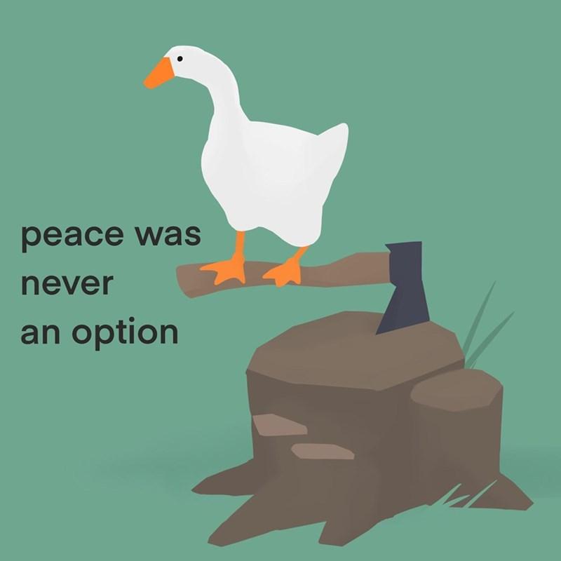 Bird - рeace was never an option