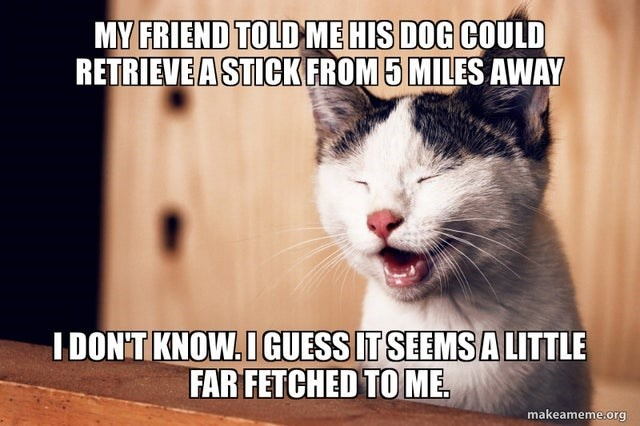 Photo caption - MY FRIEND TOLD ME HIS DOG COULD RETRIEVE A STICK FROM 5 MILES AWAY IDON'T KNOW.IGUESS IT SEEMSA LITTLE FAR FETCHED TO ME makeameme.org