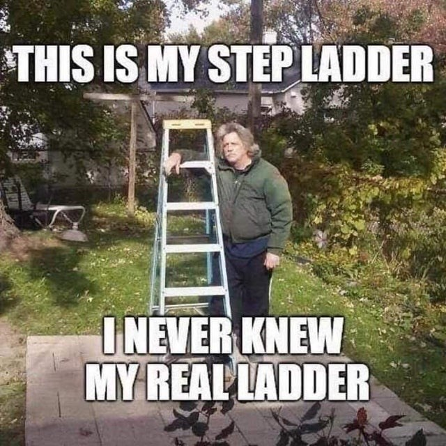 Wilderness - THIS IS MY STEPLADDER INEVER KNEW MY REAL LADDER