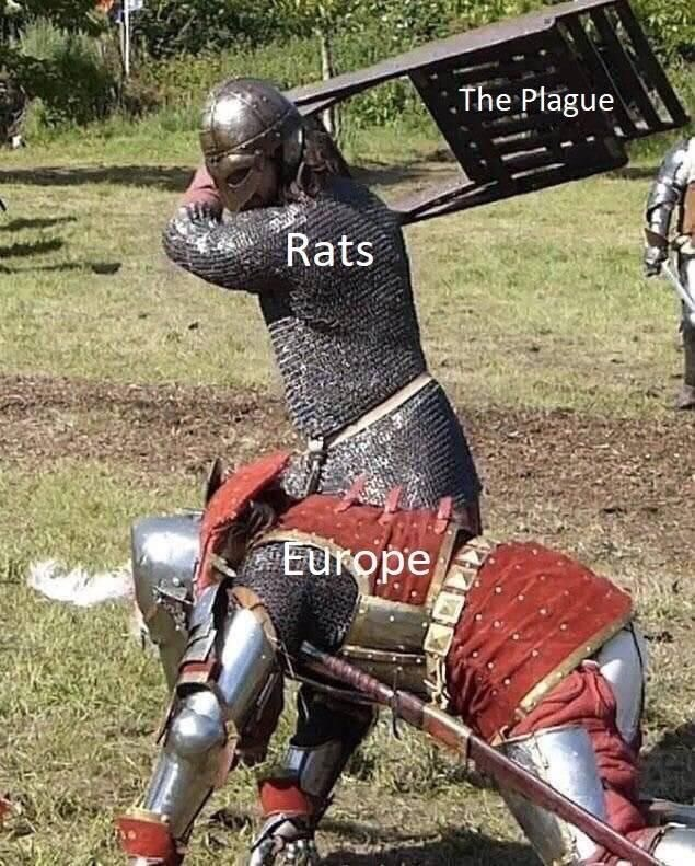 Knight - .The Ptague Rats Europe