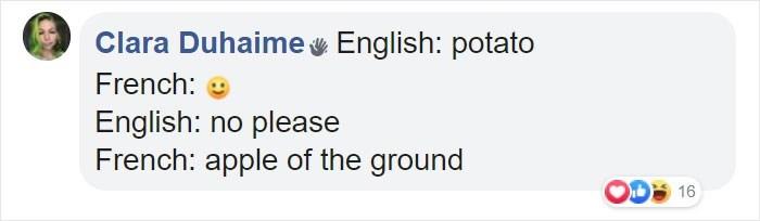 Text - Clara Duhaime English: potato French: English: no please French: apple of the ground 16