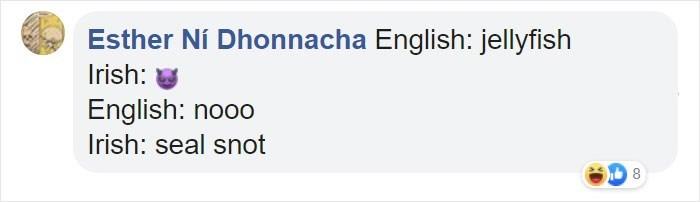 Text - Esther Ni Dhonnacha English: jellyfish Irish: English: nooo Irish: seal snot co