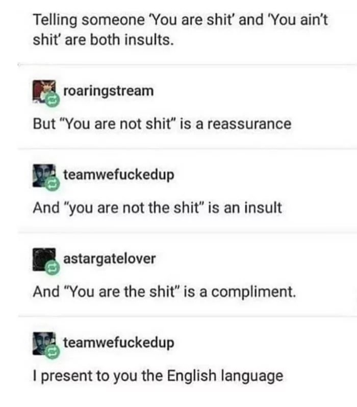 """Text - Telling someone 'You are shit' and 'You ain't shit' are both insults. roaringstream But """"You are not shit"""" is a reassurance teamwefuckedup And """"you are not the shit"""" is an insult astargatelover And """"You are the shit"""" is a compliment. teamwefuckedup I present to you the English language"""