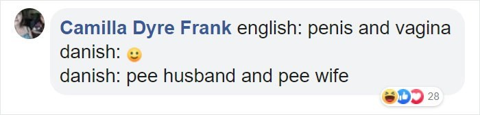 Text - Camilla Dyre Frank english: penis and vagina danish: danish: pee husband and pee wife 28