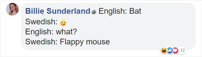 Text - Billie Sunderland English: Bat Swedish: English: what? Swedish: Flappy mouse D 12