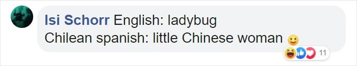 Text - Isi Schorr English: ladybug Chilean spanish: little Chinese woman 11