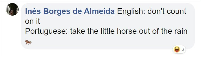 Text - Inês Borges de Almeida English: don't count on it Portuguese: take the little horse out of the rain 6