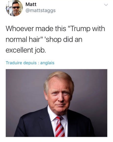 """Text - Matt @mattstaggs Whoever made this """"Trump with normal hair"""" 'shop did an excellent job. Traduire depuis : anglais"""