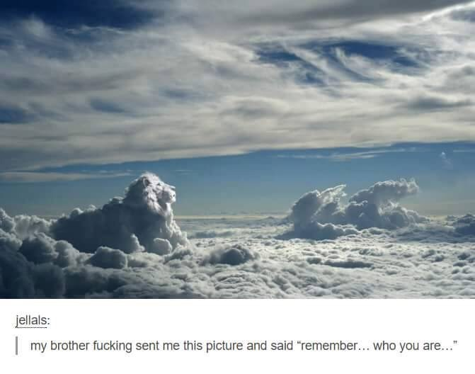 """Sky - jellals: my brother fucking sent me this picture and said """"remember... who you are..."""
