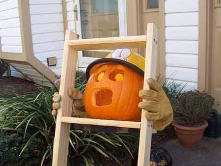 Pumpkin - PR