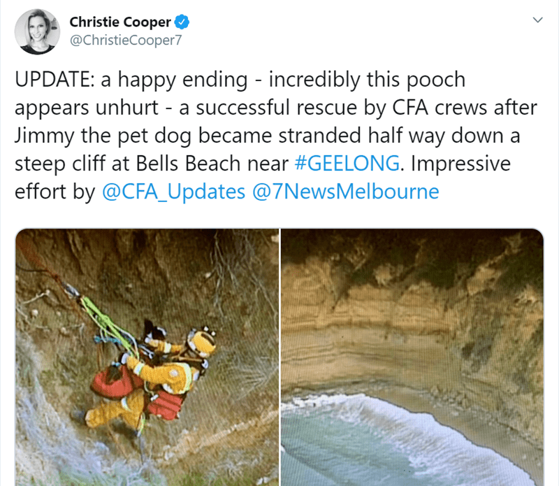 Water resources - Christie Cooper @ChristieCooper7 UPDATE: a happy ending - incredibly this pooch appears unhurt - a successful rescue by CFA crews after Jimmy the pet dog became stranded half way down steep cliff at Bells Beach near #GEELONG. Impressive effort by @CFA_Updates @7News Melbourne