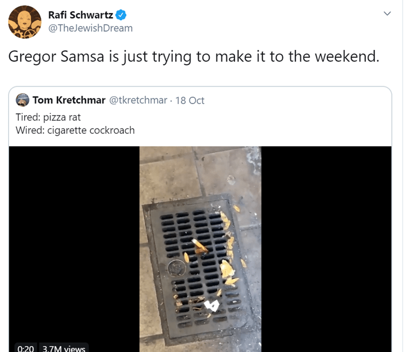 Rafi Schwartz @TheJewishDream Gregor Samsa is just trying to make it to the weekend. Tom Kretchmar @tkretchmar 18 Oct Tired: pizza rat Wired: cigarette cockroach 9:20 3.7M Yiews