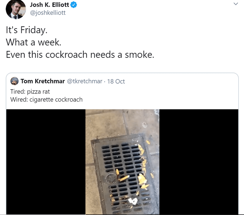 Product - Josh K. Elliott @joshkelliott It's Friday. What a week. Even this cockroach needs a smoke. Tom Kretchmar @tkretchmar 18 Oct Tired: pizza rat Wired: cigarette cockroach