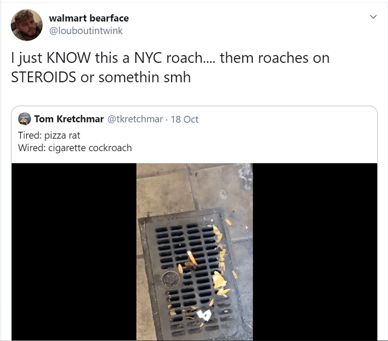 Text - walmart bearface @louboutientwink I just KNOW this a NYC roach.... them roaches on STEROIDS or somethin smh Tom Kretchmar @tkretchmar 18 Oct Tired: pizza rat Wired: cigarette cockroach