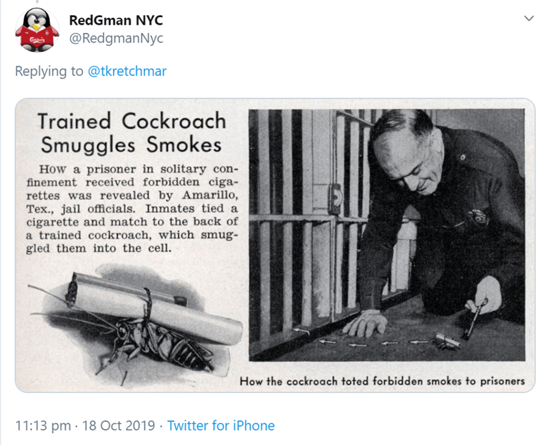 RedGman NYC @RedgmanNyc Replying to @tkretchmar Trained Cockroach Smuggles Smokes How a prisoner in solitary con- finement received forbidden ciga- rettes was revealed by Amarillo, Tex., jail officials. Inmates tied a cigarette and match to the back of a trained cockroach, which smug- gled them into the cell How the cockroach toted forbidden smokes to prisoners 11:13 pm 18 Oct 2019 Twitter for iPhone