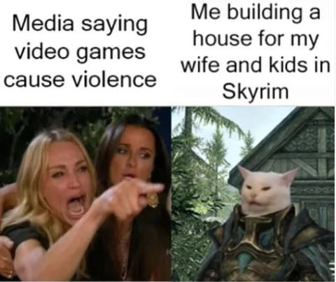 Facial expression - Me building a house for my wife and kids in Media saying video games cause violence Skyrim
