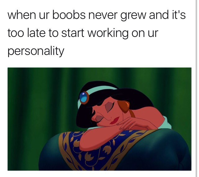 Text - when ur boobs never grew and it's too late to start working on ur personality