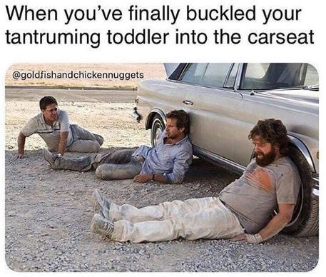 Motor vehicle - When you've finally buckled your tantruming toddler into the carseat @goldfishandchickennuggets