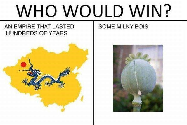 Person - Yellow - WHO WOULD WIN? AN EMPIRE THAT LASTED SOME MILKY BOIS HUNDREDS OF YEARS
